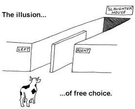 illusion-of-free-choice